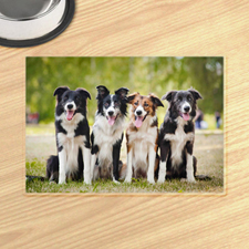 Photo Gallery Pet Meal Mat